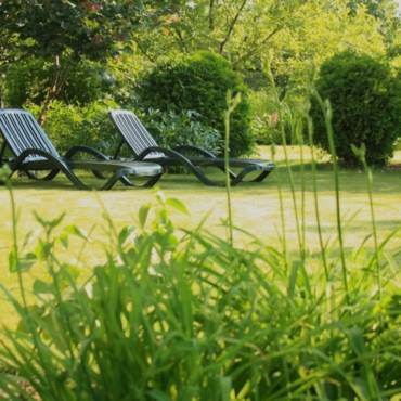 Особенности устройства газонов для небольшого сада