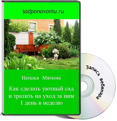 книга4Ч