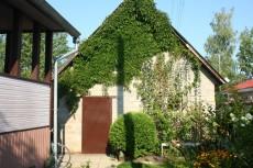 Лианы на стене дома, фото