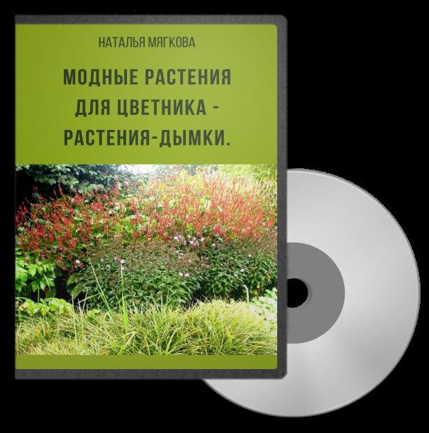 oblozhka-1 обрезка