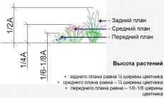 высоты растений