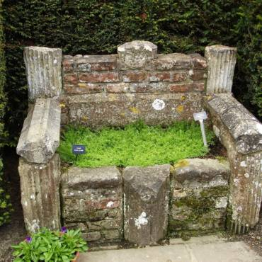 Как создать красивый сад? Просто и быстро!