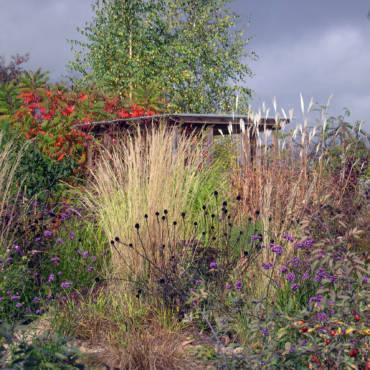 Создание сада — это чудо или умение?