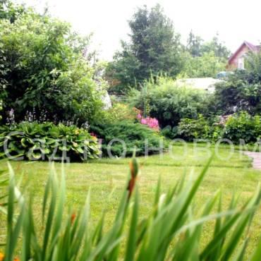 Три секрета создания сада для отдыха