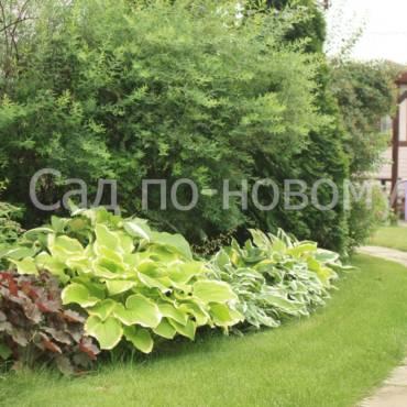 Джон Брукс «Дизайн сада». Как эта книга научила меня планировать сады