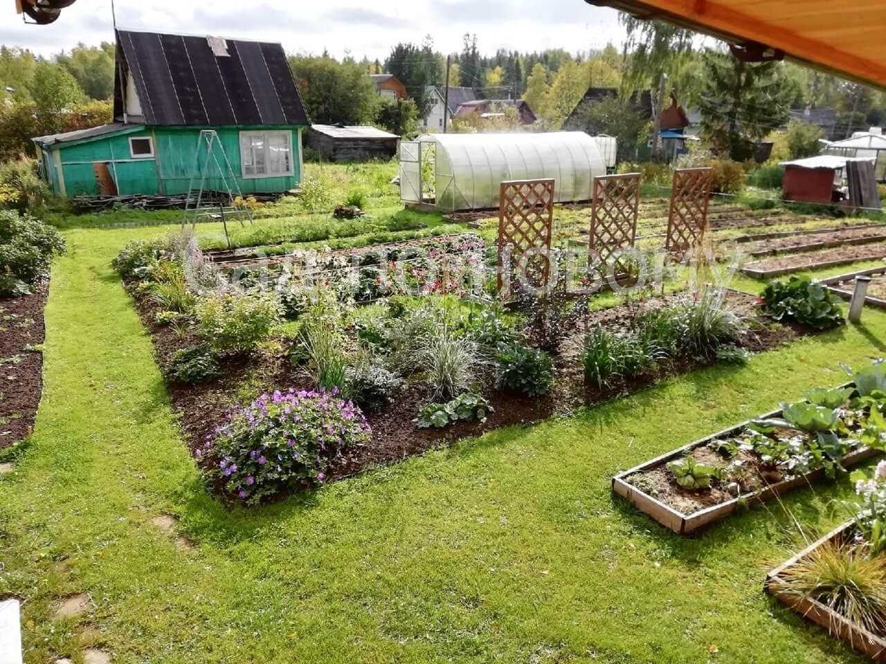 Сад в Архангельской области