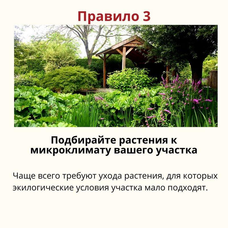 7-pravil-pri-zakladke-sada_4.jpg