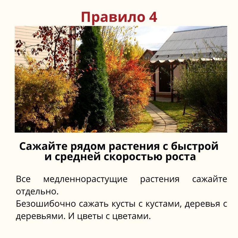 7-pravil-pri-zakladke-sada_5.jpg