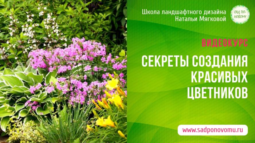 Секреты создания цветников