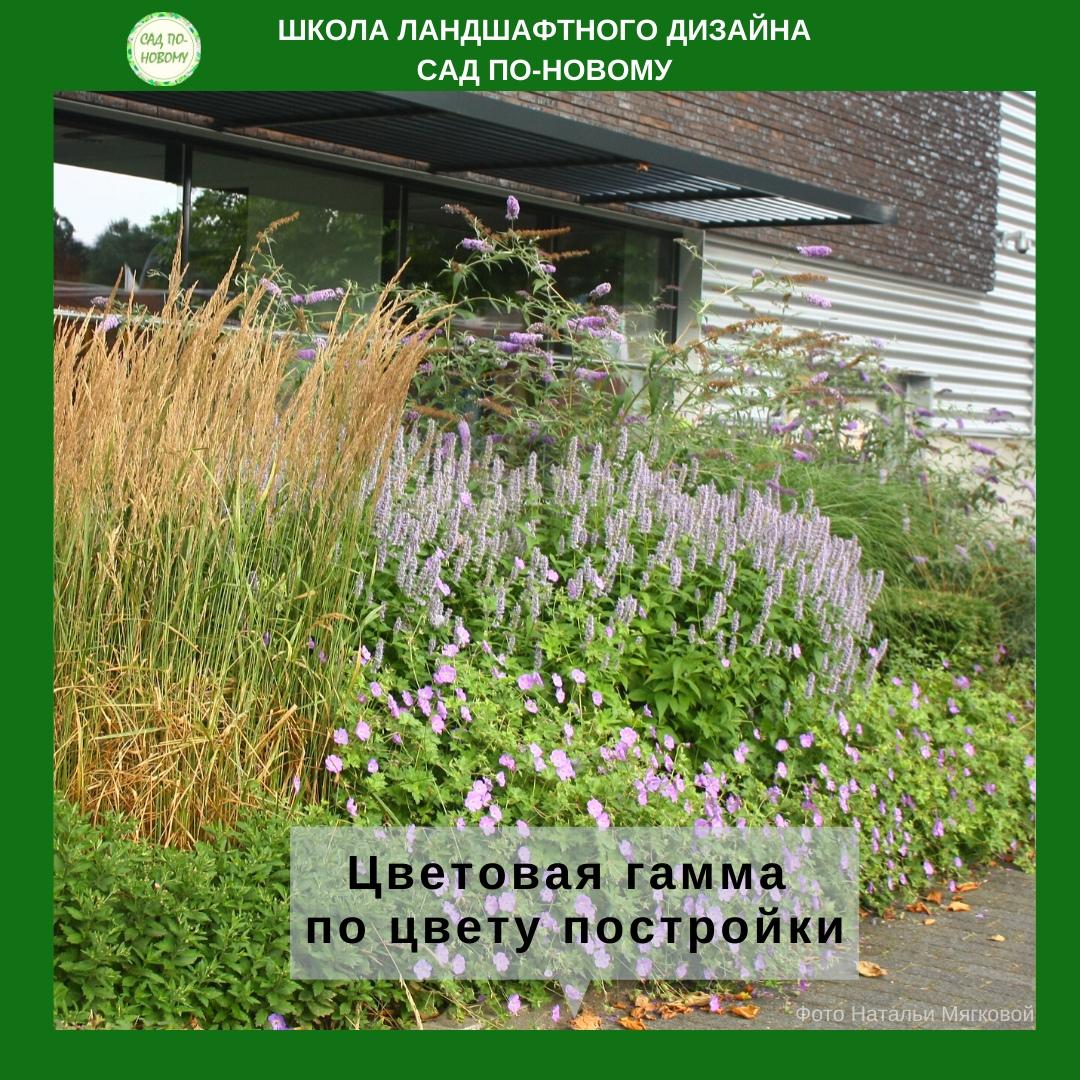 cvetovaya-sxema-cvetnika-2.jpg