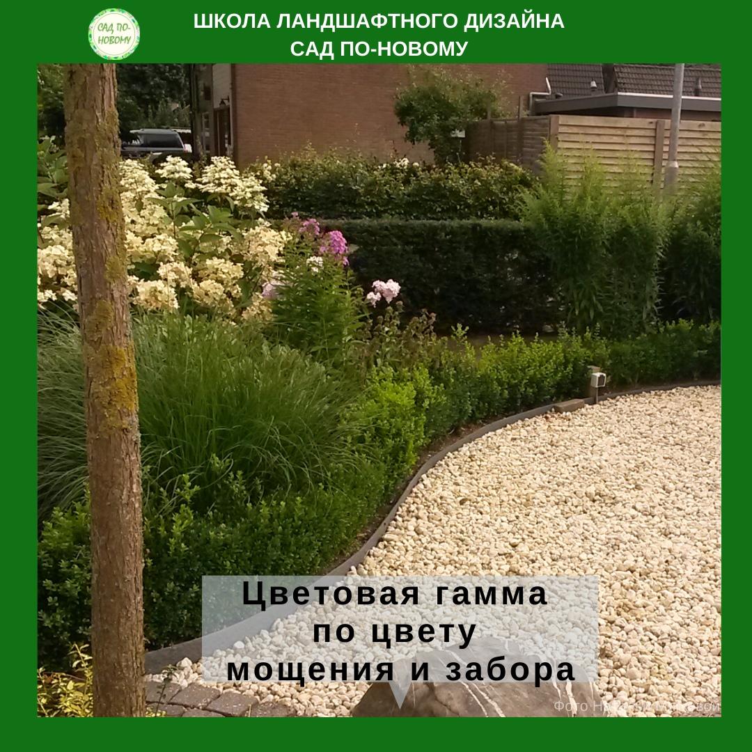 cvetovaya-sxema-cvetnika-3.jpg