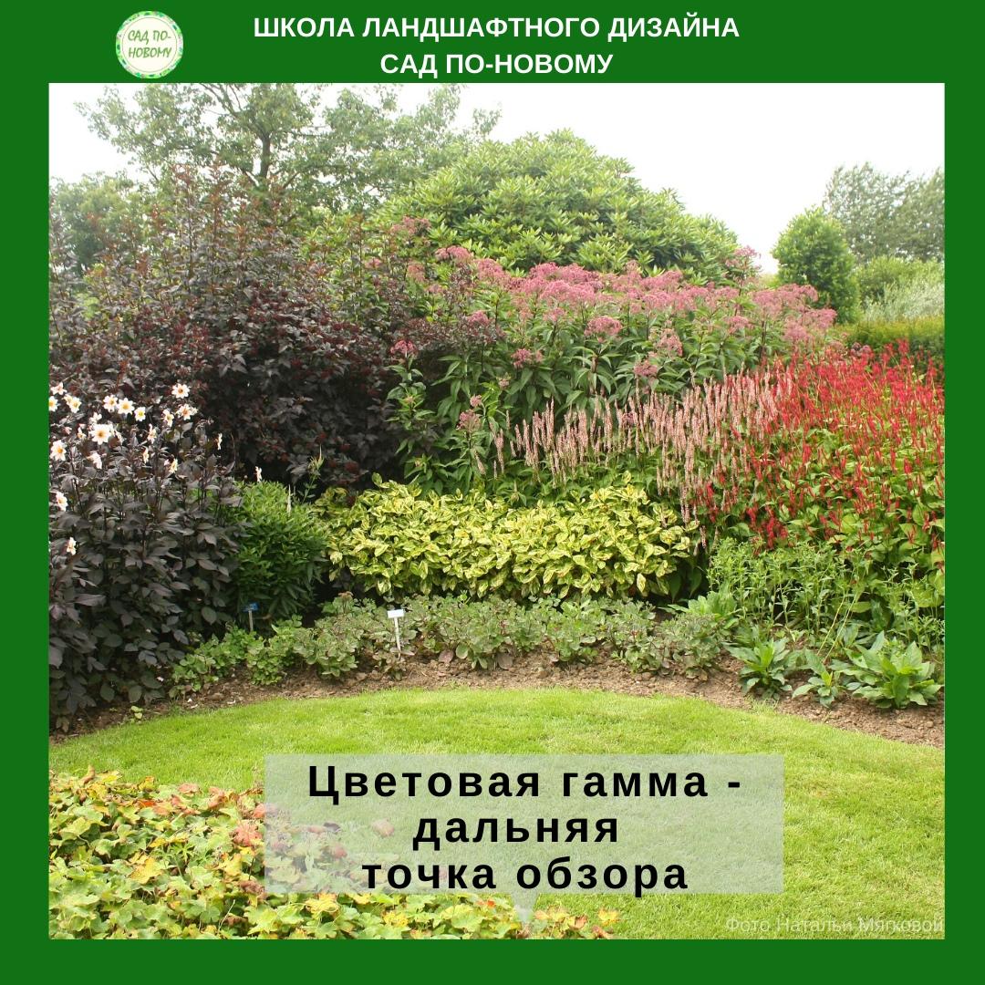 cvetovaya-sxema-cvetnika-5.jpg