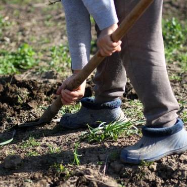 Как подготовить почву под цветники