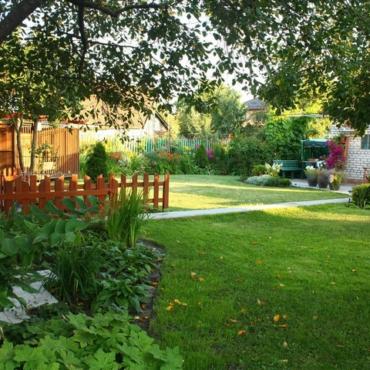 Как спланировать сад? Третья ошибка начинающего дачника