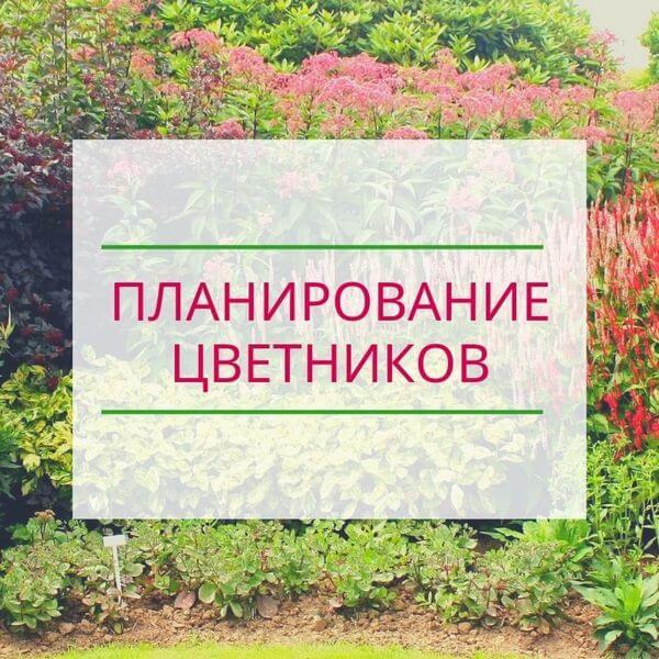 Планирование цветников