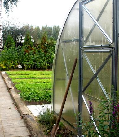 Сад малого ухода