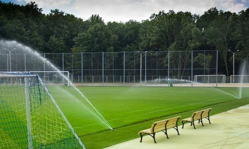 sportivnij-gazon.jpg