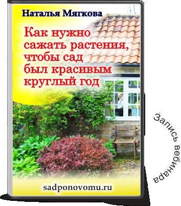 zapis-kak-nuzhno-sazhat.png